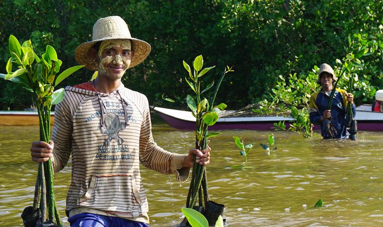 Plantation de mangroves avec l'aide des populations locales